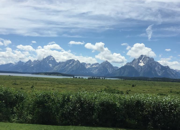 Grand Tetons from Jackson Lodge
