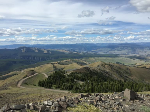 From Mt Washburn, Yellowstone