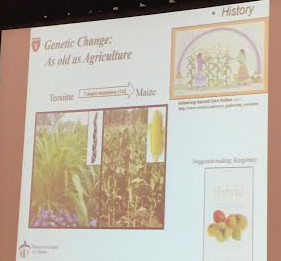 Genetic Change in Crops is as Old as Agriculture