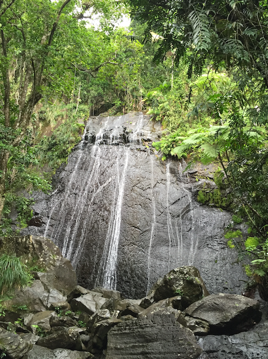 Mina Falls, El Yunque Rainforest