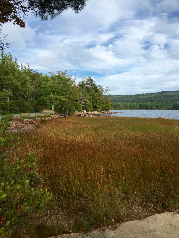 Acadia Natl Park