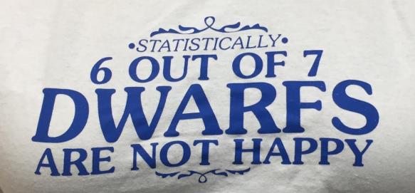 I liked this t-shirt