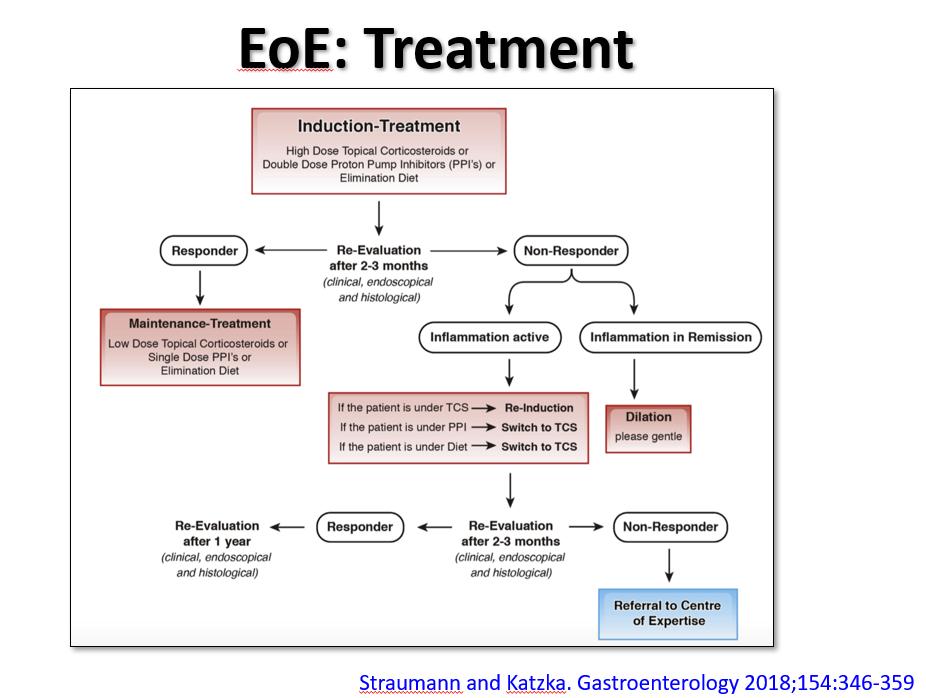 Eosinophilic Esophagitis Update Gutsandgrowth